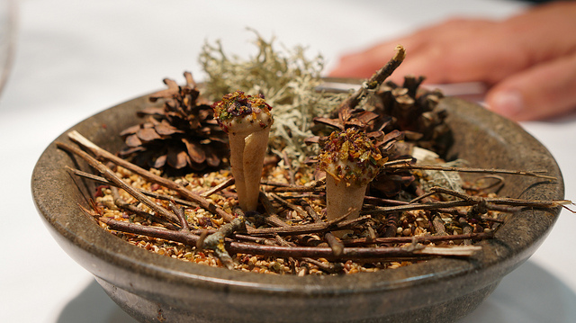 'Bajo un manto de hojas secas'